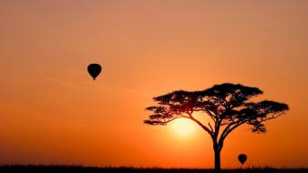 Nature sun trees silhouette hot air balloons wallpaper