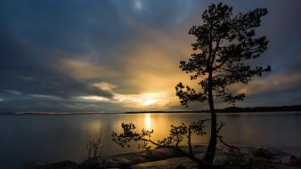 Sunset landscapes nature trees lakes Wallpaper
