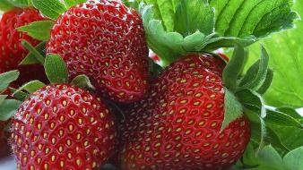Fruits food strawberries Wallpaper