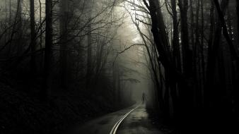 Horror trees roads Wallpaper