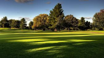 Landscapes trees grass golf course wallpaper