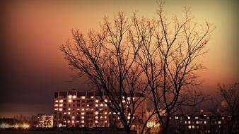 Light trees night buildings skies my photo wallpaper