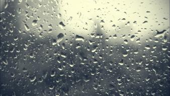 Rain window panes wallpaper