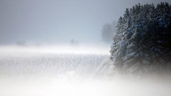 Snow landscapes wallpaper