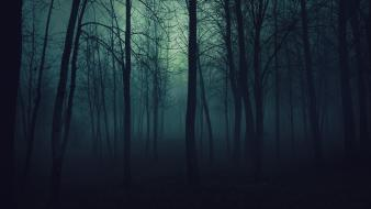 Dark night forest fog mysterious wallpaper