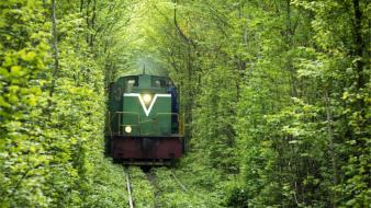 Nature love trains tunnels wallpaper