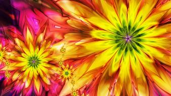 Abstract multicolor flowers fractals wallpaper