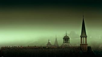 Landscapes germany fog rooftops cities birds wallpaper