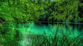 Landscapes trees forest europe croatia lakes plitvice wallpaper