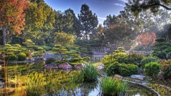 Light landscapes nature garden ponds colors vegetation wallpaper