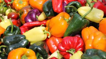 Vegetables multicolor food peppers wallpaper