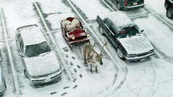 Winter snow cars christmas reindeer Wallpaper