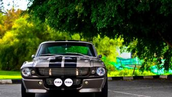 Cars ford mustang shelby gt350 elanor wallpaper