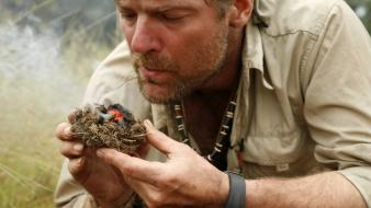 Fire men les stroud survivorman wallpaper