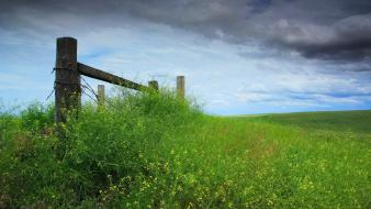 Landscapes fences grass overcast wildflowers wallpaper