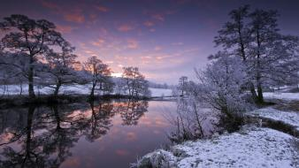 Snow trees rivers wallpaper