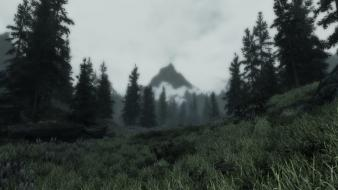 The elder scrolls v: skyrim enb wilderness wallpaper