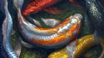 Water paintings fish koi artwork pebbles wallpaper