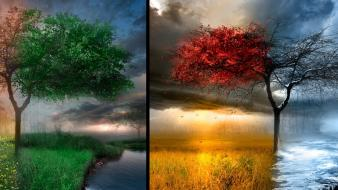 Winter summer drawn spring autumn Wallpaper