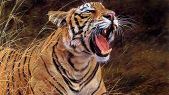 Animals artwork drawings drawn tigers wallpaper