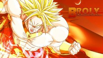 Dragon ball z broly dragonball Wallpaper
