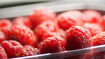 Fruits food raspberries wallpaper
