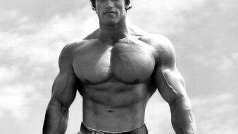 Men arnold schwarzenegger muscles muscular wallpaper