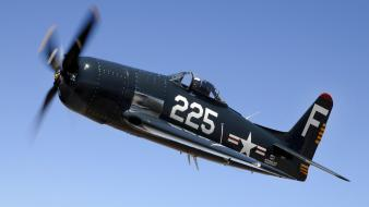 Airplanes bearcat wallpaper