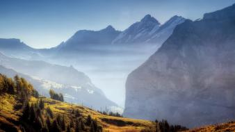 Mountains freedom trees wood fog sky wallpaper