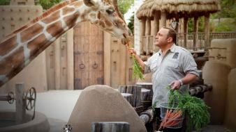 Movies carrots kevin james giraffes zookeeper (movie) wallpaper