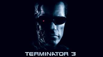 Movies terminator 3: rise of the machines wallpaper