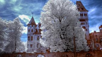 Nature romania dracula transylvania bran castle wallpaper