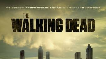 Walking dead the tv series zombie apocalypse Wallpaper