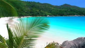 Water nature beach tropics wallpaper