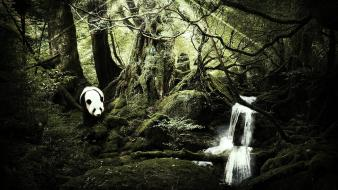 Forest panda bears magic waterfalls pandart design wallpaper