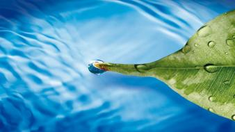Green water blue nature leaf floating 3d waterdrop wallpaper