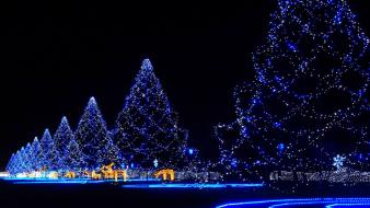 Japan night lights christmas trees decorations wallpaper