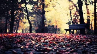 Landscapes autumn (season) bench bokeh fallen leaves wallpaper