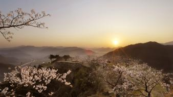 Sunset japan landscapes cherry blossoms wallpaper