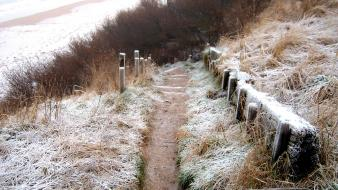 Winter coast fences grass path scotland frost Wallpaper