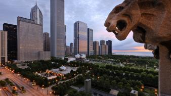 Chicago north parks illinois view wallpaper