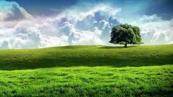 Landscapes nature wallpaper