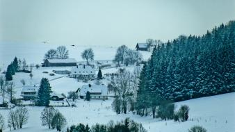 Landscapes snow trees forest houses europe switzerland village Wallpaper