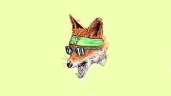 Minimalistic animals sunglasses drawings yellow background foxes wallpaper