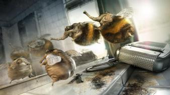 Mirrors funny bees haircut wallpaper
