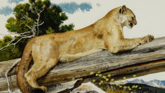 Paintings trees animals puma branches Wallpaper