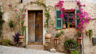 Streets flowers wall houses urban plants doors wallpaper