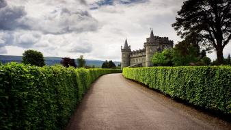 Trees architecture united kingdom scotland roads hedges wallpaper