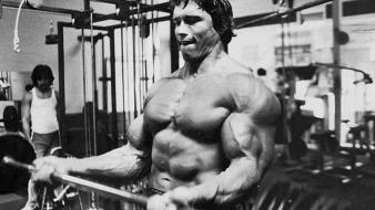 Arnold schwarzenegger workout wallpaper