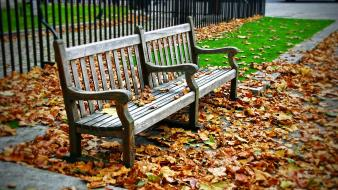 Autumn (season) wood bench fallen leaves wallpaper